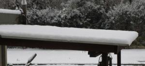 積雪の状態