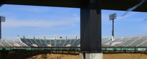 野球場の応援席