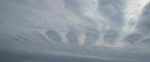 変わった形の雲